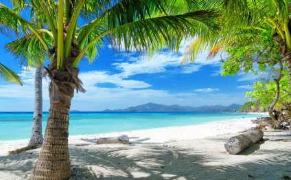 Песчаный тропический пляж