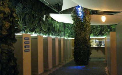Вообще аквапарков в Питере 5